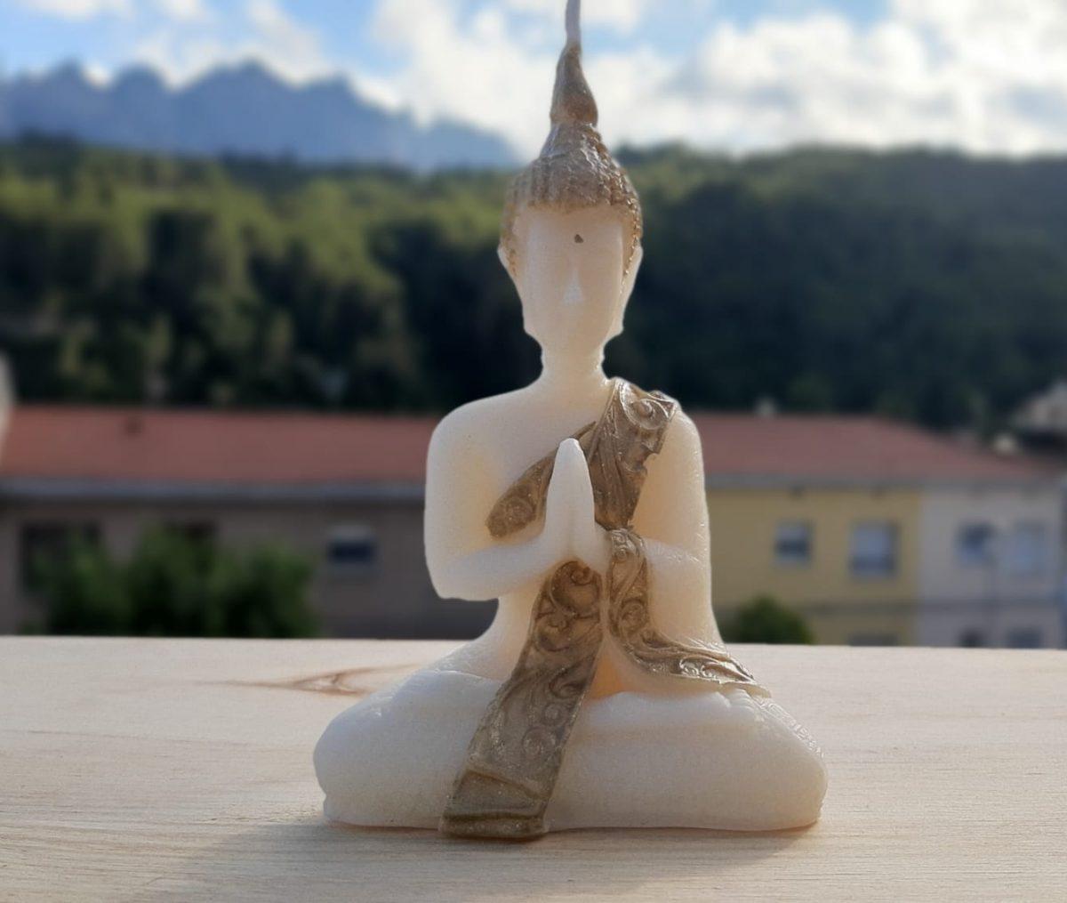 NaturalDreams8 • Vela Buda Pequeño